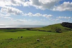 Paesaggio e nuvole di estate nella campagna di Dorset, Regno Unito Immagine Stock Libera da Diritti