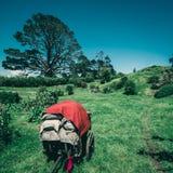 Paesaggio ed azienda agricola del giardino della campagna Fotografie Stock Libere da Diritti