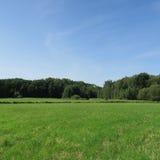 Paesaggio in estate Fotografie Stock Libere da Diritti