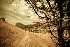 Paesaggio etnico Fotografie Stock