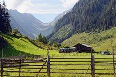 Paesaggio europeo delle alpi della valle di Schwarzachtal in Zillertal & in x28; Au Fotografia Stock Libera da Diritti