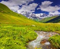 Paesaggio fantastico con un fiume nelle montagne Fotografia Stock