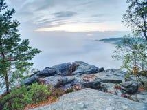 Paesaggio fantastico della montagna, rosa surreale e nebbia porpora fotografie stock libere da diritti