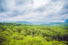 Paesaggio fantastico delle montagne di Dalat, del Vietnam, dell'atmosfera fresca, della villa fra la foresta, della forma dell'im Immagine Stock Libera da Diritti
