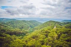 Paesaggio fantastico delle montagne di Dalat, del Vietnam, dell'atmosfera fresca, della villa fra la foresta, della forma dell'im Immagine Stock