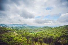 Paesaggio fantastico delle montagne di Dalat, del Vietnam, dell'atmosfera fresca, della villa fra la foresta, della forma dell'im Immagini Stock