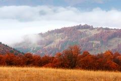 Paesaggio fantastico di autunno fotografia stock