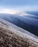 Paesaggio fantastico di autunno con gelo immagine stock libera da diritti