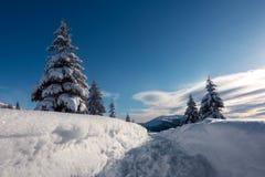 Paesaggio fantastico di inverno immagine stock
