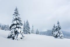 Paesaggio fantastico di inverno fotografie stock