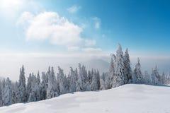 Paesaggio fantastico di inverno immagini stock