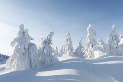 Paesaggio fantastico di inverno immagini stock libere da diritti