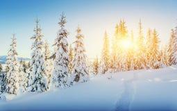 Paesaggio fantastico di inverno e traccia indossata che conducono nel supporto fotografia stock