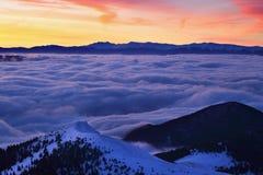 Paesaggio fantastico di inverno di mattina e di sera Cielo nuvoloso variopinto Albero innevato magico del mondo di bellezza fotografia stock