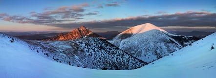Paesaggio fantastico di inverno di mattina e di sera Cielo nuvoloso variopinto Albero innevato magico del mondo di bellezza immagine stock libera da diritti
