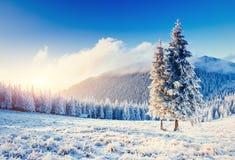 Paesaggio fantastico di inverno nelle montagne Tramonto In anticipa fotografie stock libere da diritti