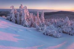 Paesaggio fantastico di inverno di sera Cielo nuvoloso drammatico Carpatico, Ucraina, Europa Bello paesaggio di inverno della mon fotografia stock