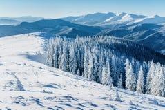 Paesaggio fantastico di inverno Tramonto magico nelle montagne un il giorno gelido La vigilia della festa La scena drammatica fotografia stock libera da diritti