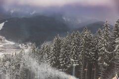 Paesaggio fantastico di sera che emette luce dalla luce solare Scena invernale drammatica Parco naturale Carpatico, Ucraina, Euro immagini stock libere da diritti