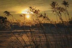 Paesaggio fantastico di sera che emette luce dalla luce solare Scena invernale drammatica Parco naturale Carpatico, Ucraina, Euro fotografie stock