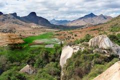 Paesaggio fine del Madagascar Fotografia Stock Libera da Diritti