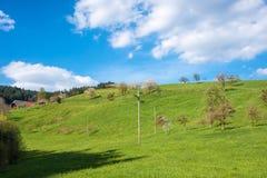 Paesaggio in Fischerbach-Mitteltal Fotografie Stock Libere da Diritti