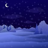 Paesaggio, foresta di inverno di notte Immagine Stock