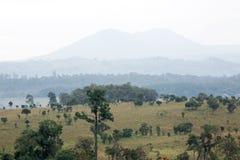 Paesaggio, foresta e catene montuose Fotografia Stock Libera da Diritti