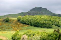 Paesaggio francese pieno di sole (Puy de Sancy) Fotografie Stock Libere da Diritti