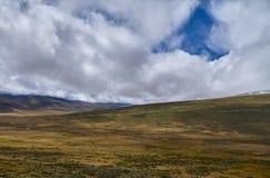 Paesaggio freddo in Siberia, l'inizio di autunno dell'inverno Il Ukok Immagini Stock