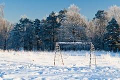 Paesaggio gelido di inverno Fotografia Stock Libera da Diritti