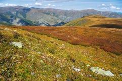 Paesaggio giallo delle montagne Fotografia Stock