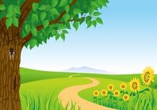 Paesaggio, girasole e cicala di estate illustrazione vettoriale