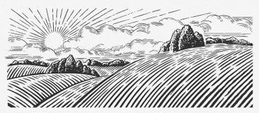 Paesaggio grafico rurale illustrazione di stock