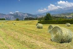 Paesaggio in Haute Provence Immagine Stock Libera da Diritti