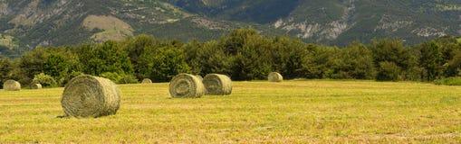 Paesaggio in Haute Provence Fotografia Stock