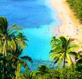 Paesaggio hawaiano fotografia stock