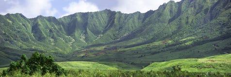 Paesaggio hawaiano - montagne Immagine Stock