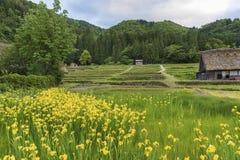 Paesaggio idilliaco del Giappone Immagini Stock Libere da Diritti