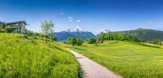 Paesaggio idilliaco di estate nelle alpi Immagine Stock