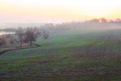 Paesaggio idilliaco di mattina della campagna con alba della nebbia del campo di agricoltura Fotografia Stock