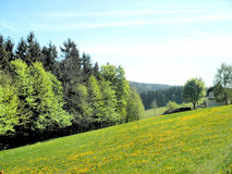Paesaggio idilliaco in primavera Fotografia Stock Libera da Diritti