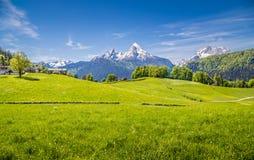 Paesaggio idilliaco nelle alpi con i prati verdi freschi Fotografie Stock