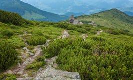 Paesaggio idilliaco nelle alpi con i prati verdi freschi Immagini Stock