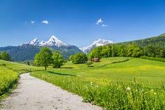 Paesaggio idilliaco nelle alpi, Nationalpark Berchtesgaden, Baviera, Germania di estate Immagini Stock Libere da Diritti