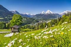 Paesaggio idilliaco nelle alpi in primavera con la casetta tradizionale della montagna Fotografie Stock