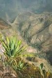 Paesaggio impressionante della montagna, coltivazione di loto sul fondo del canyon Coculi Santo Antao Island, Capo Verde Fotografie Stock