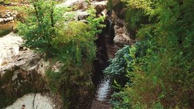 Paesaggio incantante della foresta georgiana sopra il canyon di martvili, latifoglie sui bordi delle rocce di pietra coperte di m video d archivio