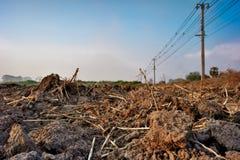Paesaggio incrinato ed arido del suolo fotografia stock libera da diritti