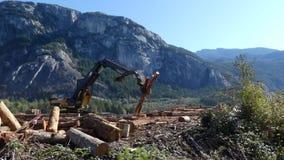 Paesaggio industriale della montagna del sollevatore del legname archivi video